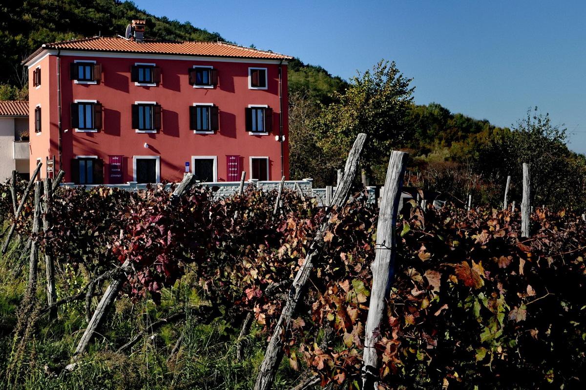 Casa Rossa Vinograd