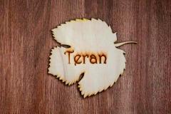 teran1